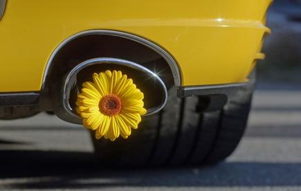 Sportliche Hybrid-Fahrzeuge: Ein wachsender Markt